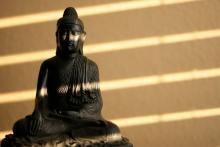 Elvonulások Ácsán Dhammanandóval