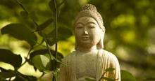 Online buddhista meditáció A Tan Szigete Közösség szervezésében